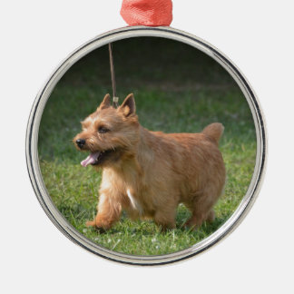 Adorable Glen of Imaal Terrier Round Metal Christmas Ornament