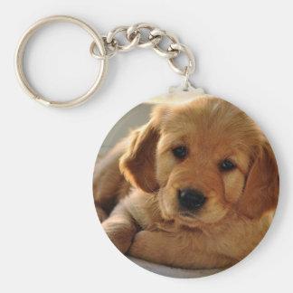 Adorable Golden Retriever puppy dog Keychain