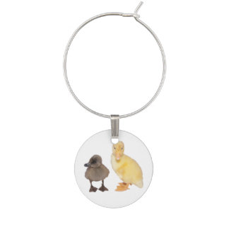 Adorable Gray and Yellow Ducklings Photograph Wine Glass Charm