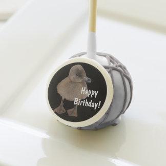 Adorable Gray Ducklings Photograph Cake Pops