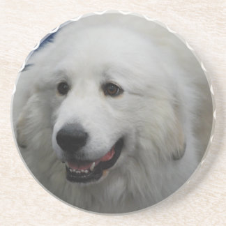 Adorable Great Pyrenees Dog Coasters