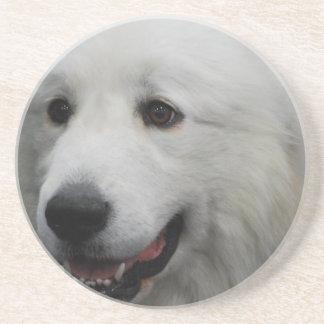 Adorable Great Pyrenees Dog Coaster