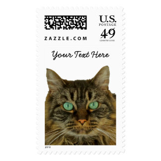 Adorable Green Eyed Cat Postage to Personalize