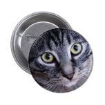 Adorable Grey Cat Pinback Button
