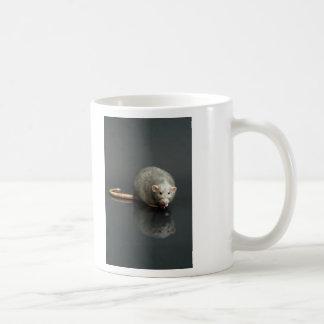 Adorable Grey Rat Coffee Mugs