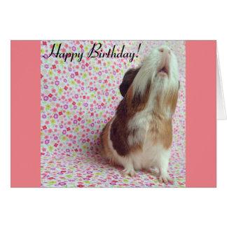 Adorable Guinea Pig Birthday Card