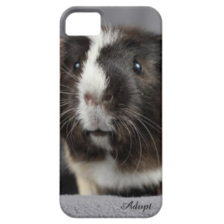 Adorable Guinea Pig Case