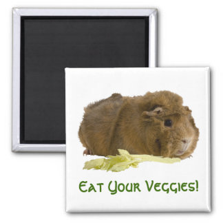 Adorable Guinea Pig Eating Celery Photography Magnet