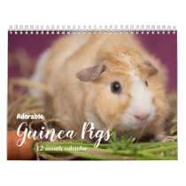 Adorable Guinea Pigs 2020 Calendar