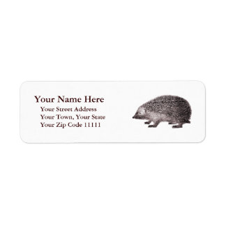 Adorable Hedgehog Antique Engraving Label