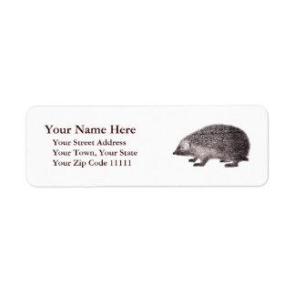 Adorable Hedgehog Antique Engraving Label