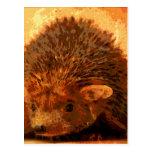 adorable hedgehog postcard