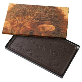adorable hedgehog 2 pound dark chocolate bar box