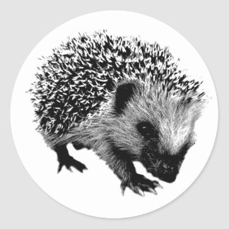 Adorable Hedgehog. Wildlife Digital Engraving Stickers