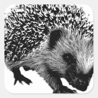 Adorable Hedgehog. Wildlife Digital Engraving Square Sticker