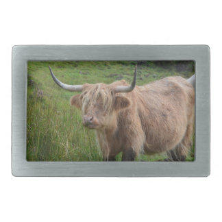 Adorable Highland Cow Rectangular Belt Buckle
