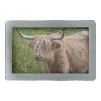 Adorable Highland Cow Belt Buckles