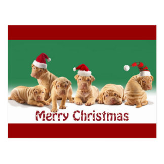 Adorable Holiday Sharpei Tees and Gifts Postcards