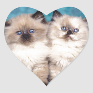 "Adorable ""Hug Me"" Persian Kittens Heart Sticker"