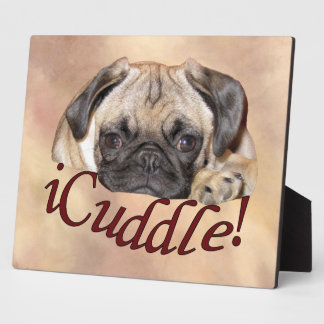 Adorable iCuddle Pug Puppy Display Plaque