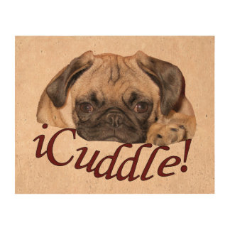 Adorable iCuddle Pug Puppy Photo Cork Paper