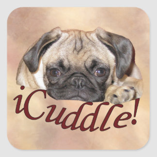 Adorable iCuddle Pug Puppy Square Sticker
