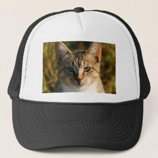 Adorable Inquisitive Baby Tabby Kitten Trucker Hat