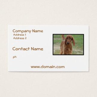 Adorable Irish Setter Business Card