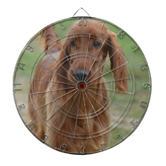 Adorable Irish Setter Dartboard