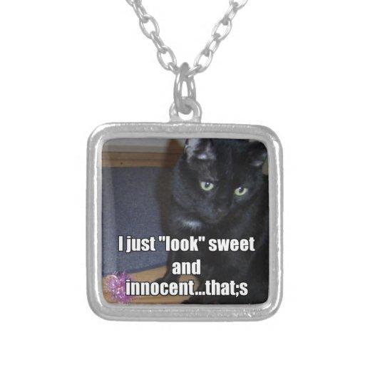 adorable.jpg collar