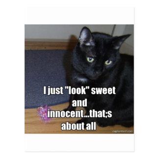 adorable.jpg postcard