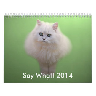 Adorable Kitten Calendar