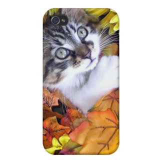 Adorable Kitten Cat with Paw Up Playing in Flowers Covers For iPhone 4