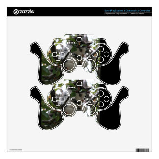 Adorable Kitten Decal For PS3 Controller