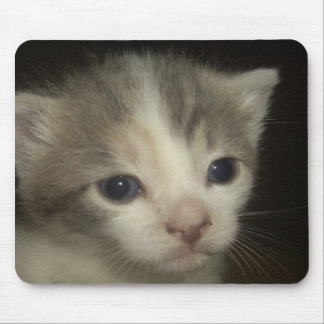 Adorable Kitten Face Mouse Pad