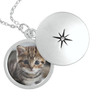 adorable kitten sterling silver necklace
