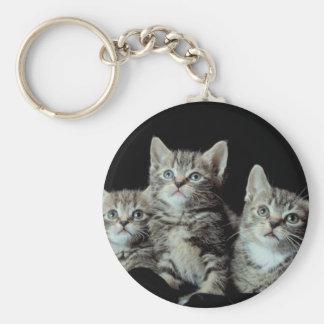 Adorable Kitten Trio Keychains