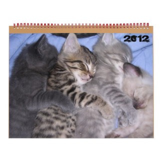 ADORABLE KITTENS 2012 CALENDAR