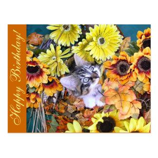Adorable Kitty Cat Kitten Chewing Gerbera Flowers Postcard