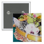 Adorable Kitty Cat Kitten Spying, Basket, Paw Up Buttons