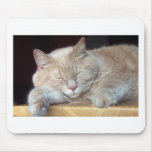 ADORABLE KITTY CAT MOUSE PAD