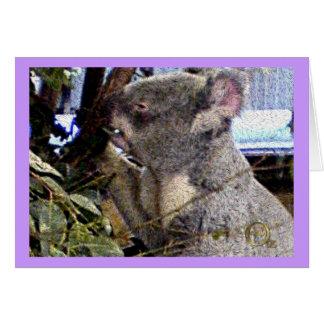 Adorable Koala Card