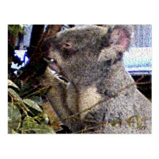 Adorable Koala Postcard