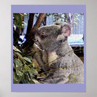Adorable Koala Posters