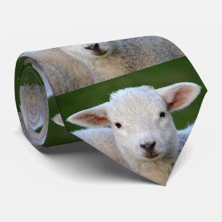 Adorable Lamb Tie