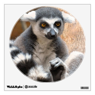 Adorable Lemur Wall Decal