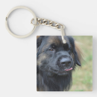 Adorable Leonberger Square Acrylic Keychain