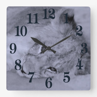 Adorable lion cub resting square wall clock