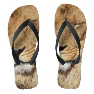 Adorable Lion Flip Flops