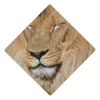 Adorable Lion Graduation Cap Topper